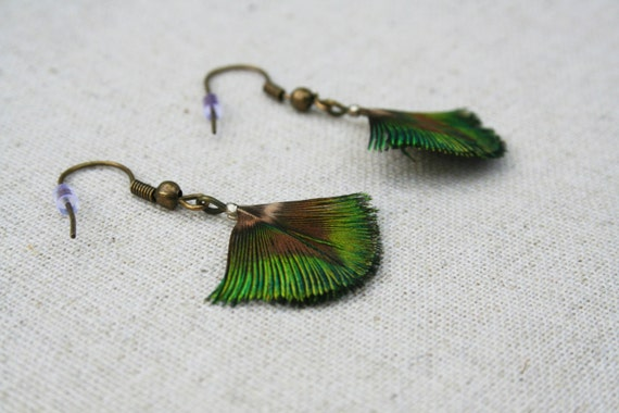 Peacock Feather Earrings on Sterling Silver Earwires