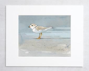 Watercolors: Birds