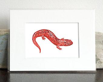 Red Salamander Art Print, Animal Watercolor Painting