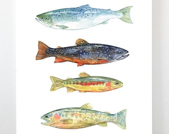 Colorful Fish Watercolor Art Print, fly fishing trout painting