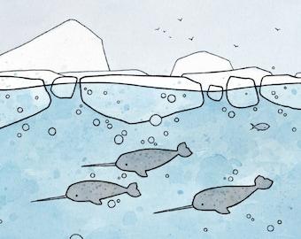 Illustrations: Ocean
