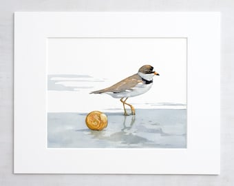 Shorebird and shell watercolor print, beach art painting