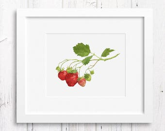 Botanical print strawberry art wall decor, fruit botanical watercolor 8x10