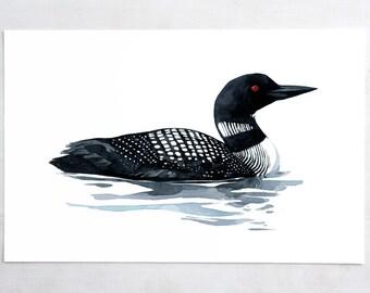 Loon art print bird watercolor painting , coastal wall art, lakehouse decor