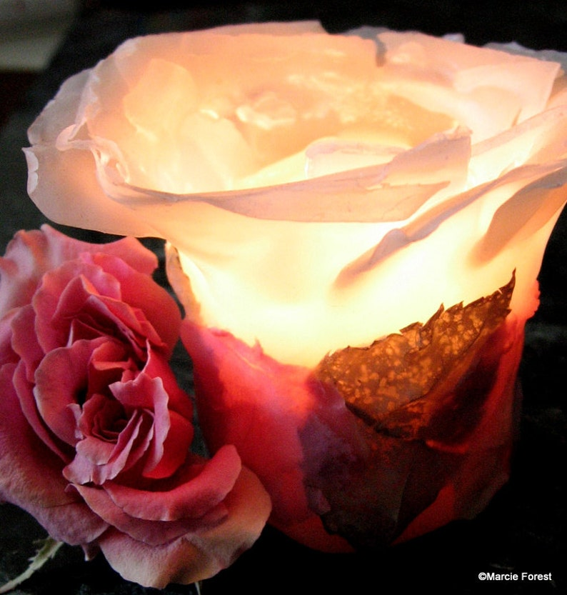 Beeswax Rose Candle Holiday Home Decor Christmas Wedding image 0