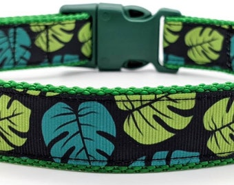 Monstera Dog Collar / House Plant Monstera Deliciosa Leaves / Swiss Cheese Plant