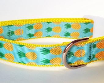 Pineapple Dog Collar / Summer Dog Collar