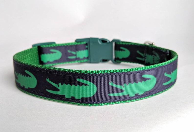 "After While Crocodile Dog Collar  Alligator Dog Collar L (1"" wide) 15-24 in"