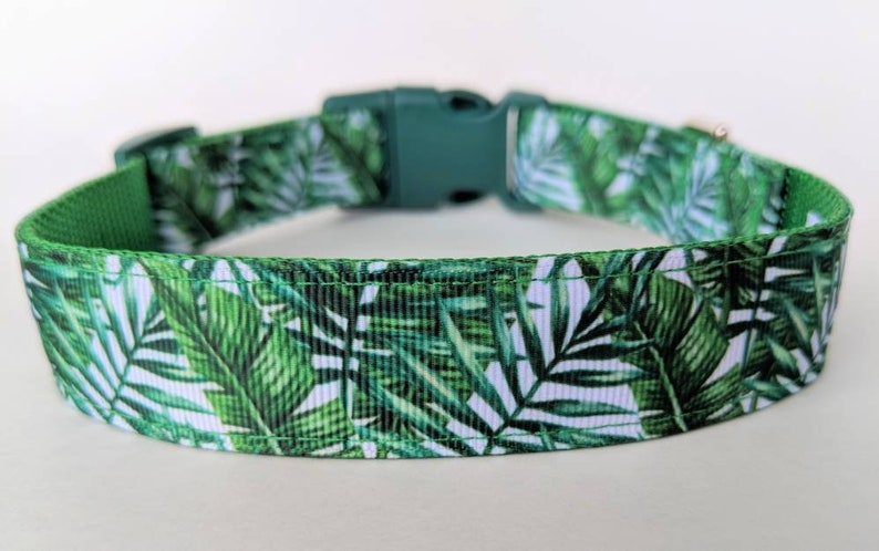 Palm Leaves Dog Collar / Summer Dog Collar / Beach Dog Collar image 0