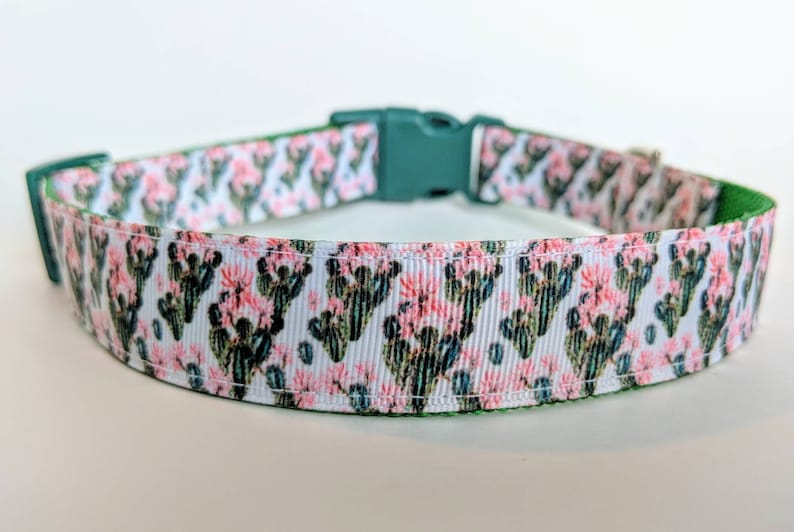 Flowering Cactus Dog Collar / Succulent Plants Flowers image 0