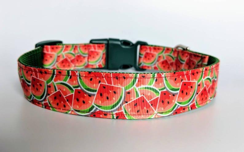 """Watermelon Dog Collar / Summer Dog Collar / Food Dog Collar M (1"""" wide) 13-19 in"""