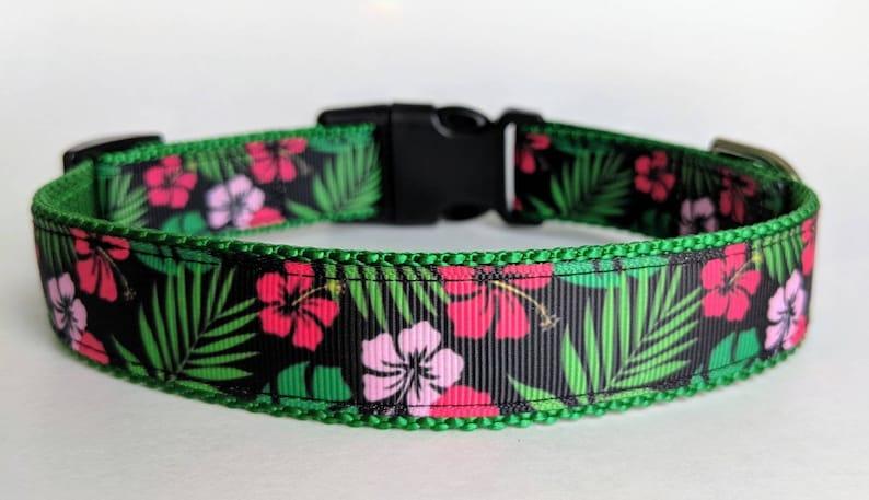 """Hawaiian Shirt Dog Collar / Floral Dog Collar / Summer Dog M (1"""" wide) 13-19 in"""