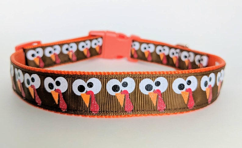 Gobbles the Turkey Dog Collar / Thanksgiving Dog Collar / Fall image 0