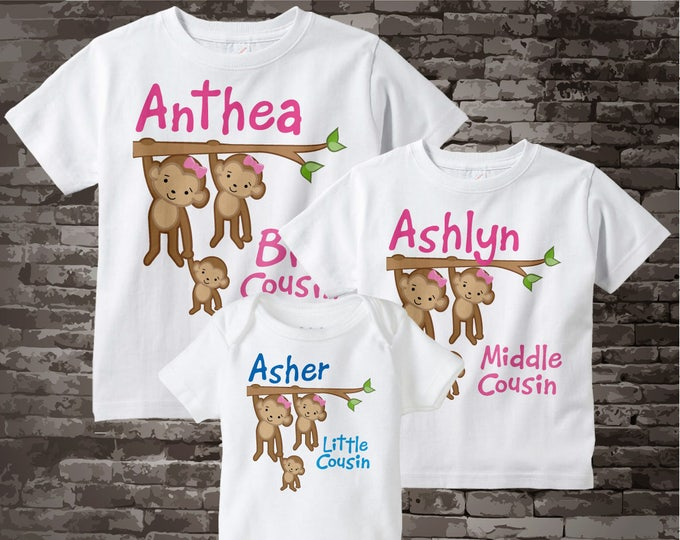 Set of Three Personalized Big Cousin Girl, Middle Cousin Girl, and Little Cousin Monkey Boy Tee Shirts or Onesies 09262012c