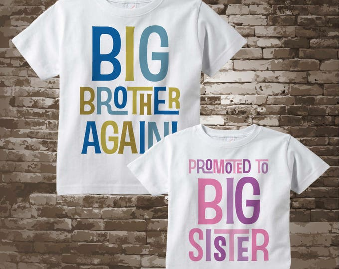 Shirt set of Two - Sibling Big Brother Again and Promoted to Big Sister Shirts - Pregnancy Announcement - Price is for both items 12282017a