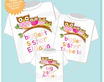 Set of three, Biggest Sister, Bigger Sister and Big Sister with Unknown new baby Owl. Tee shirts or Onesies (01142014b)