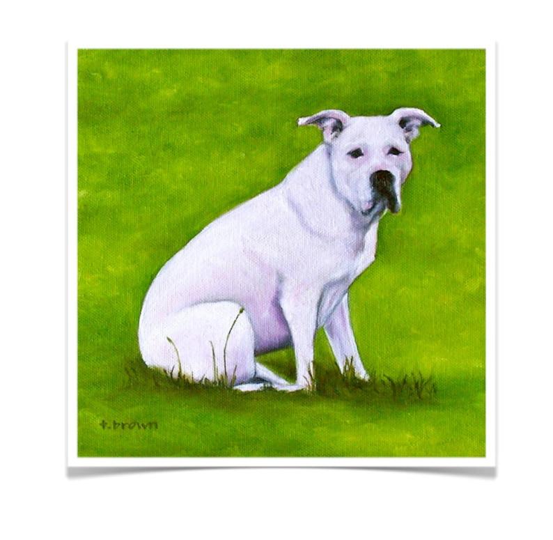 dogs. fine art print. pitbulls. pit bull rescue. animals. image 0