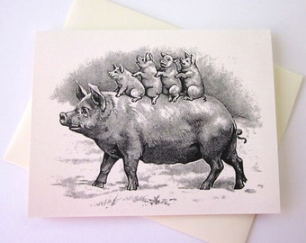 Pig and Piglets Note Card Set of 10 in White or Light Ivory with Matching Envelopes