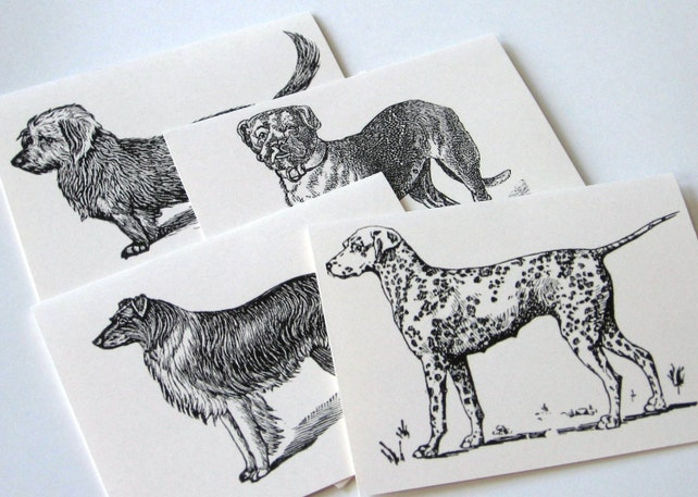 Dog Note Cards Dalmation, Collie, Terrier, Malamut - Set of 12