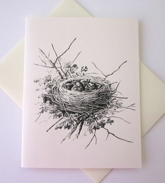 Bird Nest with Baby Birds Note Card Set of 10 in White or Light Ivory with Matching Envelopes