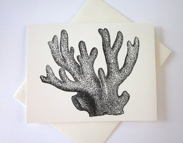 Coral Cards Set of 10 in White or Light Ivory with Matching Envelopes