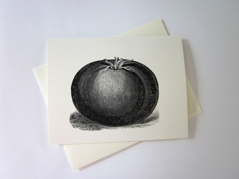 Tomato Cards Set of 10 in White or Light Ivory with Matching Envelopes