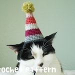 CROCHET PATTERN - Pet Hat Costume - PDF Instant Download - Birthday Party Cat - Cute Gift