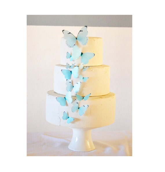 Edible Butterflies Assorted Pastel-  set of 15 - Cake & Cupcake Toppers - Food Decoration Wedding Cake Decoration- Blue Shown
