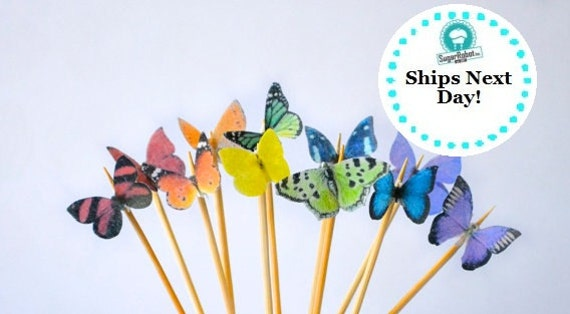Itsy Bitsy Mini Edible Butterflies - Rainbow Assortment set of 48 - for Cake Decorating and Cupcake Toppers