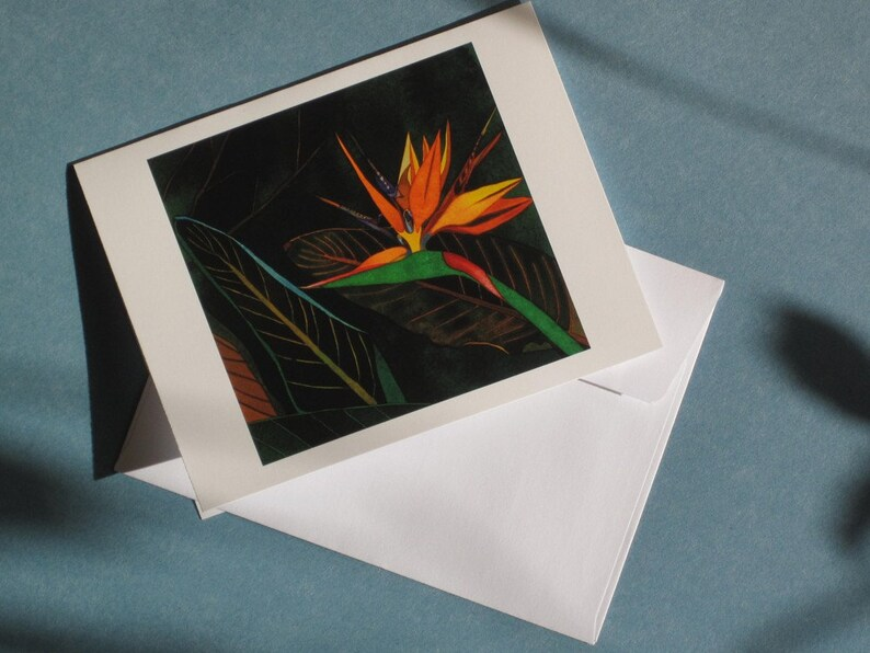 Paraiso III Greeting Card