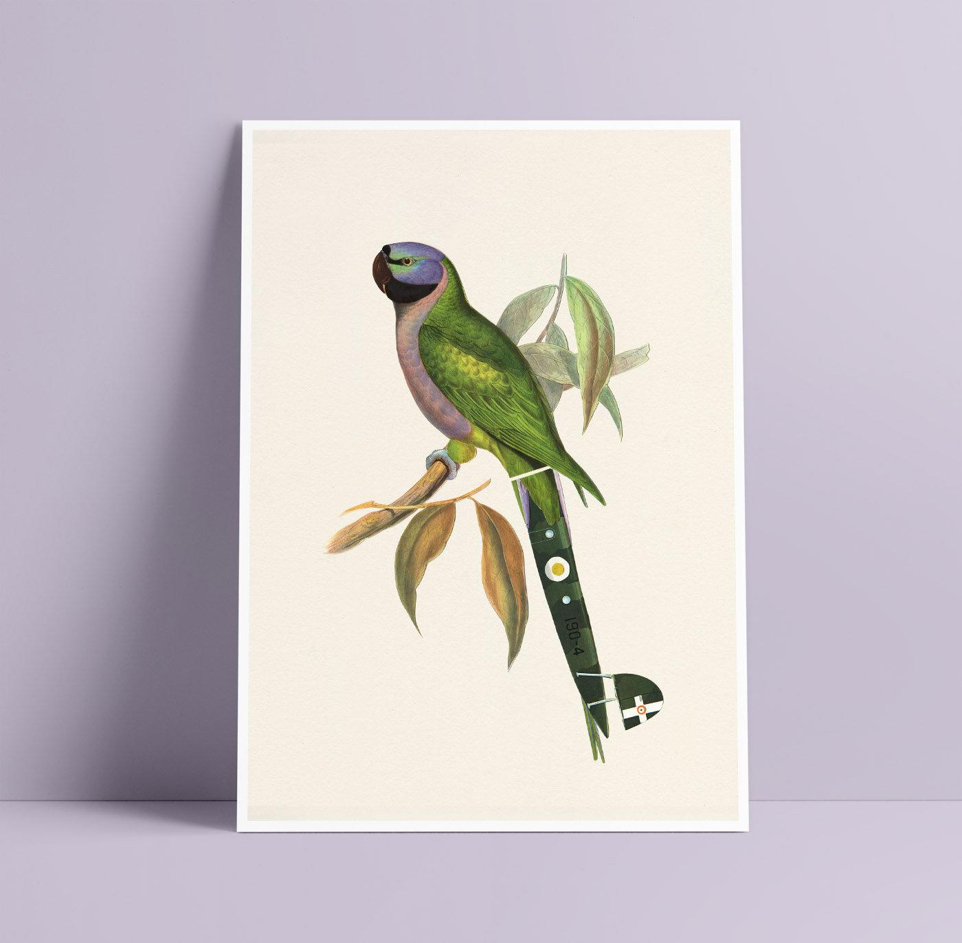 Tropical Green /& Purple Parrot Art Print