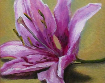 Pink Lily II - original daily painting by Kellie Marian Hill