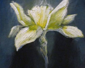 Daffodil - original daily painting by Kellie Marian Hill