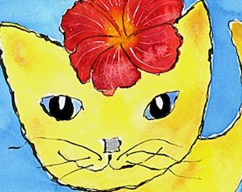 Hibiscus Cat