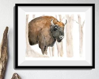 Bison art print, art print Bison in the woods, Bison watercolor painting, animal art, wild life art, southwest, woodland print, animal art