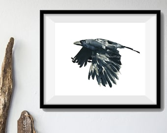 The Raven art Print, watercolor print Raven, black crow, fathers day, Halloween, bird art, for him, unisex, limited edition