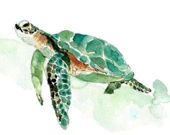 Sea turtle watercolor print, sea turtle painting, sea life watercolor, nursery decor, sea turtle art print, nautical, coastal, thejoyofcolor