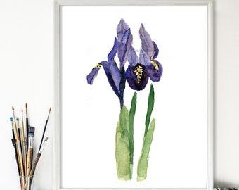 Art print Iris, print of watercolor,  purple, green, Botanical painting, wild flower art, February birthday, mothers day, Iris print