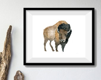 Bison art print of  original watercolor painting, wild life, animal art, American Buffalo print, woodland art, wild west, wild life art