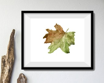 Fall Leaf art print, leaf watercolor print, dried leaves, brown and green, home decor, natural history ,Indian summer, leaf art print