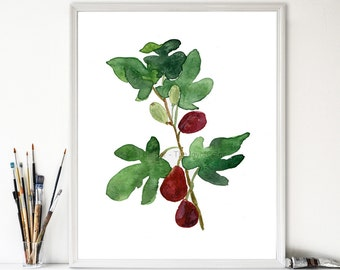 Fig print, print of watercolor, botanical art, Mediterranean plants, mountain of spices, Green, wine red, fruits art, fig art print