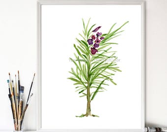 Rosemary art  print, Botanical art, kitchen art, foodie gift, herb watercolor, Rosemary branch, green, purple,  herb print, Rosemary print