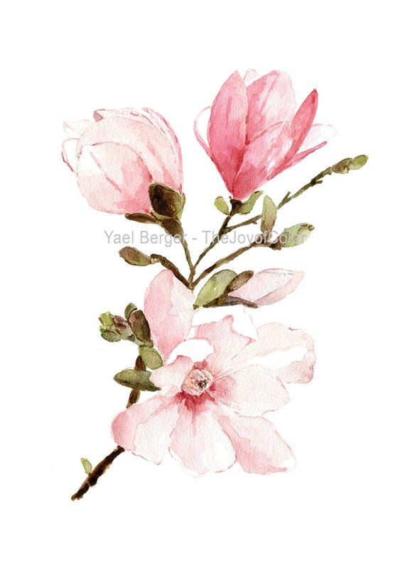 Magnolia Watercolor Painting Magnolia Flowers Watercolor Etsy