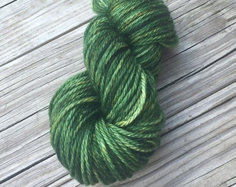 forest green Hand Dyed Bulky Yarn, Everglades Excursion, Big Treasures