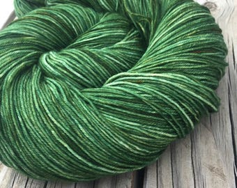 Hand Dyed Sock Yarn Everglades Excursion Hand Painted forest green 463 yards superwash merino nylon fingering weight Treasured Toes swm