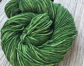Hand Dyed DK Yarn Everglades Excursion green hand painted yarn 274 yards handdyed dk sport superwash merino wool swm spring ready to ship