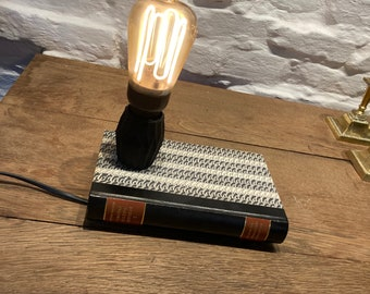 Book 'em Danno  -  Bookworm lamp books