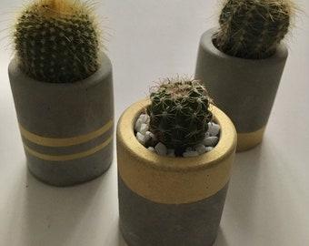 Mums day Concrete planter, candle holder - wedding favor, hostess gift, stocking stuffer