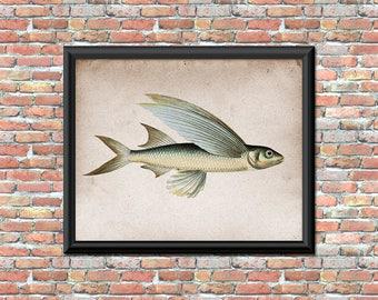 Flying Fish Art Print Tropical Marine Fisherman Sportsman Boating Deep Sea Nautical Digital Printable