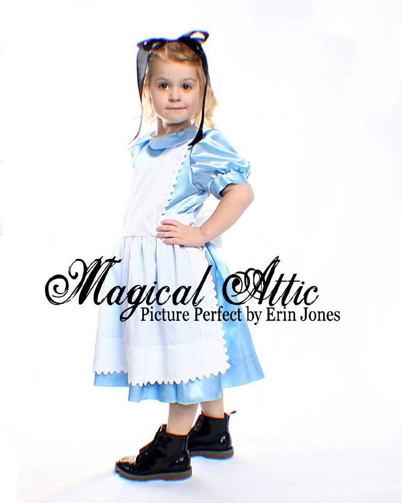 bfea6380f0f Custom Boutique ALICE IN WONDERLAND Girl Size Costume Dress Set